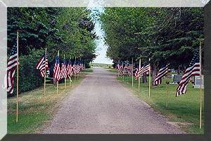 vets avenue of flags